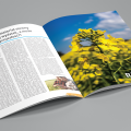 magazyn rolnik
